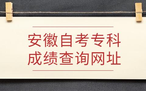 安徽自考专科成绩查询网址